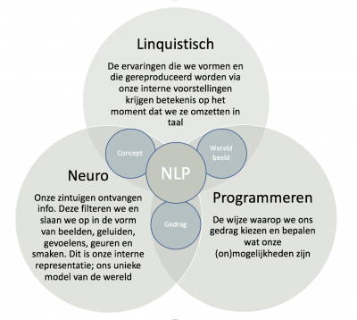 NLP Paardencoaching