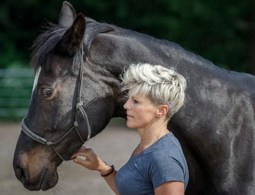 Hoe Bente paardencoaching heeft ervaren..